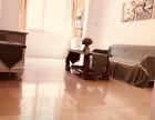 徐家汇地铁房 时尚新精装修 两房出租7300/月 拎包入住肇嘉浜