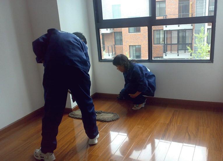 大坪开荒 擦玻璃 洗地毯