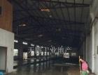 杏坛南朗1400方星棚结构首层厂房地面全新