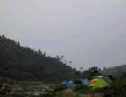 户外露营帐篷出租