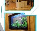 鹦鹉鱼 热带鱼 鱼缸定制 大鱼缸 小鱼缸 便宜的鱼缸