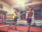 深圳专业散打培训 强身搏击俱乐部