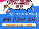 深圳东莞佛山网红直播带货机构,厂家带货方案,网红资源丰富
