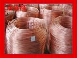 昆山康锦隆QAl10-4-4铝青铜铜板_精密铜管铜棒_铜卷批发价
