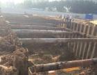 专业湛江地区钢板桩施工租赁