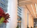 绿地 双子塔 现房200至4500平 全球招租