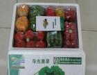 绿海寿光帝国礼品蔬菜 绿海寿光帝国礼品蔬菜诚邀加盟