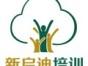 大连华南区网页设计师培训,网页学校哪家好,新启迪