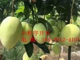 水果行业企业微信小程序开发