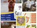 天然鲜肉宠物粮-