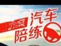 滨江区汽车新手陪练,细心指导,专业快速教会独立开车