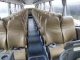 青岛到洛阳的长途客车青岛到洛阳