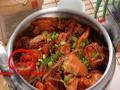 沧州加盟黄焖鸡米饭的不如压锅菜加盟 技术转让