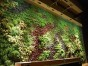 贵阳植物墙 哪些植物可以制作仿真植物墙 贵州润园绿化公司