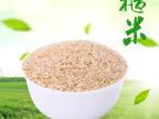 优质东北糙米批发五谷杂粮工厂直销支持OE