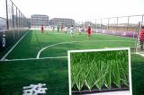 湖北绿昂人工塑料幼儿园草坪地面材料