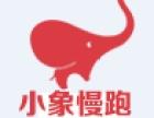 小象慢跑:你知道什么是百度权重吗?