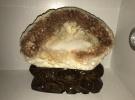 黄岩岛砗磲雕刻艺术收藏摆件