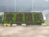 海淀十一花坛摆放 造型花坛 国庆花坛布置 提供发票