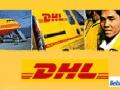 大连DHL快递3993 5368大连DHL提供(大货)特价