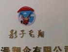 岳阳银滩动力伞飞行活动招募中