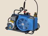 长春宝华JUNIOR II-E移动式电动空气压缩机 充气泵