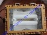 SBD1103-YQL50B免维护节能防爆灯吸顶式壁式管吊式护栏