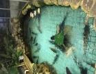 黄石港区鱼乐圈主题餐厅