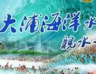 芜湖大浦海啸馆一日游