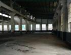 出租东肖经济开发区钢结构厂房