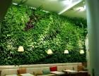 室内外墙体绿化,园艺小品 阳台花园