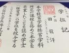 初级日语n4至n2辅导