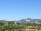 北京半岛现房出售送后花园车库 三面环湖一面靠山 独栋别墅