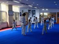 惠州惠阳淡水市政府广场附近,专业少儿跆拳道暑假班