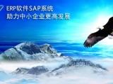 湖南SAP B1系统供应商 SAP B1实施商 长沙达策