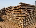 唐山竹竿高压防护电线杉木杆 园林绿化杉木杆 腾益建材