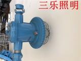 DGS12/127L(A)蓝色锥形巷道灯精品