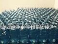 扬州较大纯净水分公司