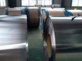 B450NQ冷轧板卷特等钢及B460NQ耐候钢冷轧板竞拍价格