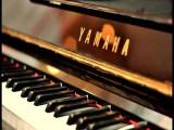东营垦利回收钢琴卡哇伊雅马哈钢琴回收