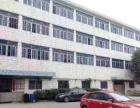 横岗西坑社区标准厂房5200平带精装独院招租