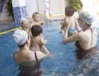 亲子游泳店加盟项目实力护航 打造亲子游泳加盟品牌