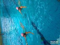 昆明高端成人游泳培训