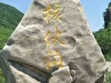绥化花岗岩批发|[供应]辽阳优惠的花岗岩