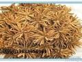 惠东回收虫草:回收冬虫夏草