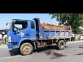 专业的农用车配送