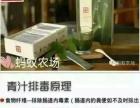 蚂蚁农场大麦若叶青汁加盟 500元