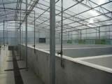弘康溫室 畜牧水產養殖溫室建設 溫室骨架配件加工銷售