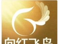 呼市韩语基础班-中级留学班-向红飞鸟国际教育17年