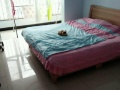 小卧室,大卧室均可住,找合租一个女孩